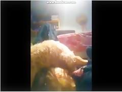 Dos morenas comparten perro
