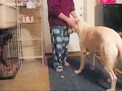 Pelirroja Sexo perro