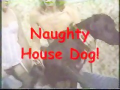Cute naked chick likes horse cock in the large garden