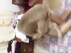 Couple enjoy sex with their dog