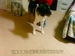 Bilara y su perro grande