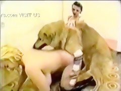 Busty blonde and dog and brunette threesome