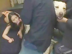 Eye On The Dog
