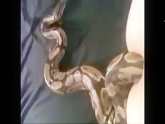 snake in her ass